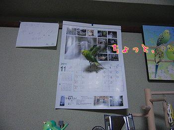 f0196665_235878.jpg