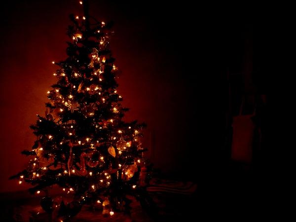 クリスマスイヴ_d0105967_22225767.jpg