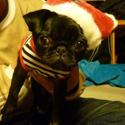 クリスマスイヴ_d0105967_22241830.jpg