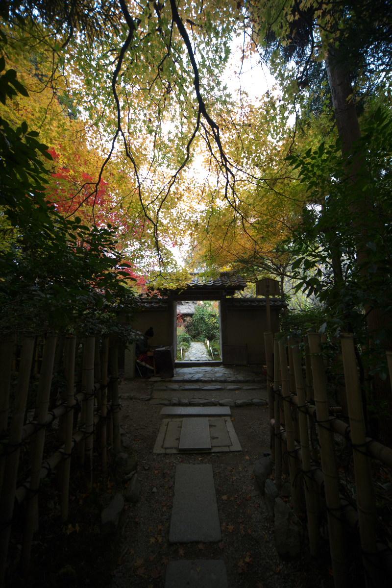 紅葉 2011 嵯峨野 厭離庵_f0021869_1294222.jpg