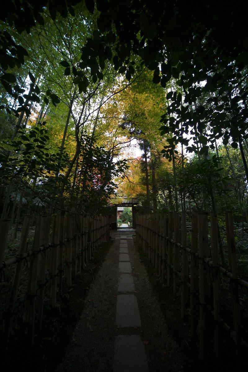 紅葉 2011 嵯峨野 厭離庵_f0021869_1304945.jpg