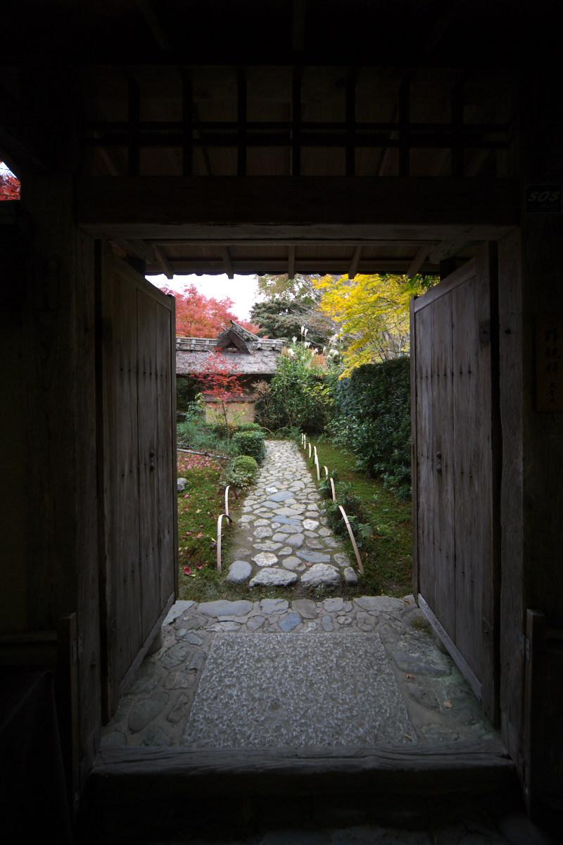 紅葉 2011 嵯峨野 厭離庵_f0021869_1312123.jpg