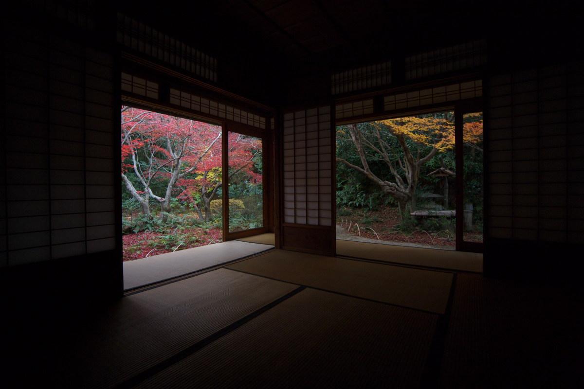 紅葉 2011 嵯峨野 厭離庵_f0021869_1404343.jpg