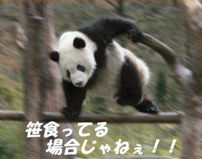 b0173672_0364345.jpg