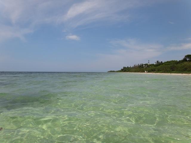 New Caledonia_b0195093_741847.jpg