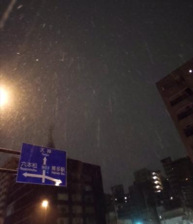 雪〜_f0232994_337124.jpg