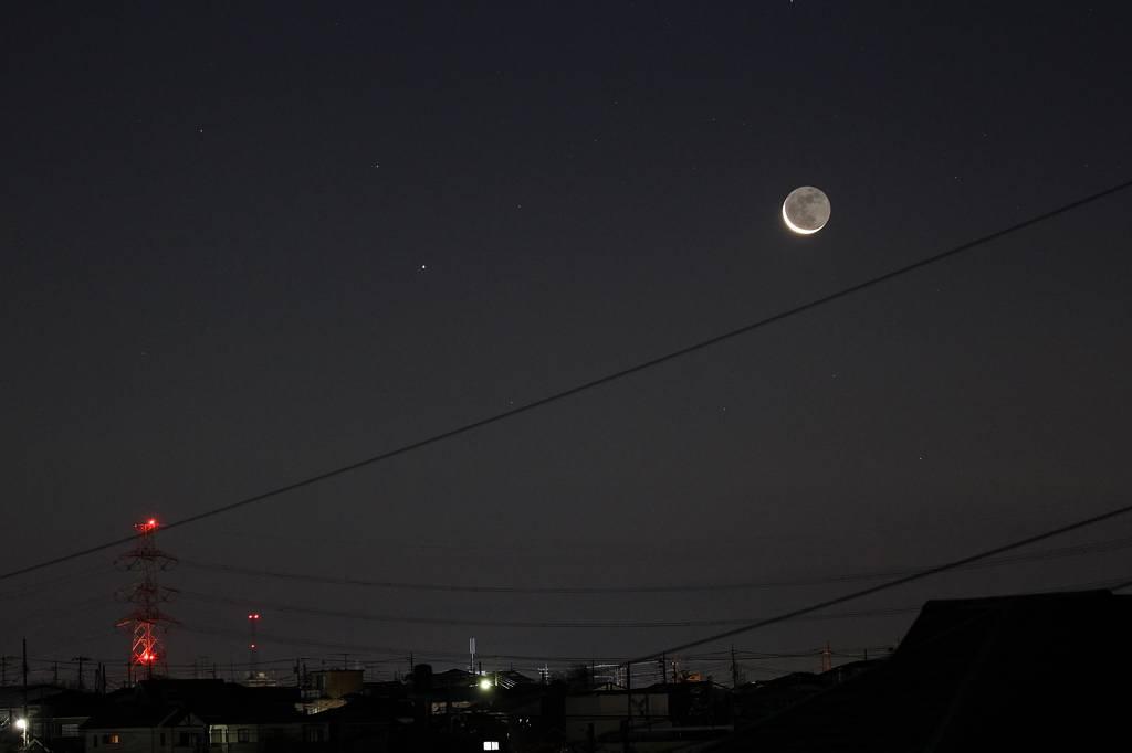 朝寝坊のコガモ達/天体ショー・眉月と水星が大接近_b0024798_947360.jpg