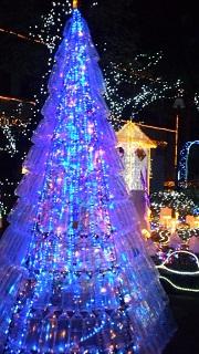 ☆クリスマス・イルミネーション☆_f0068517_18252362.jpg