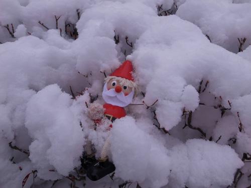 white-christmas_a0113127_108476.jpg