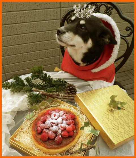静香家のクリスマス。クリスマス・コスプレ楽しかった!_e0236072_1431297.jpg