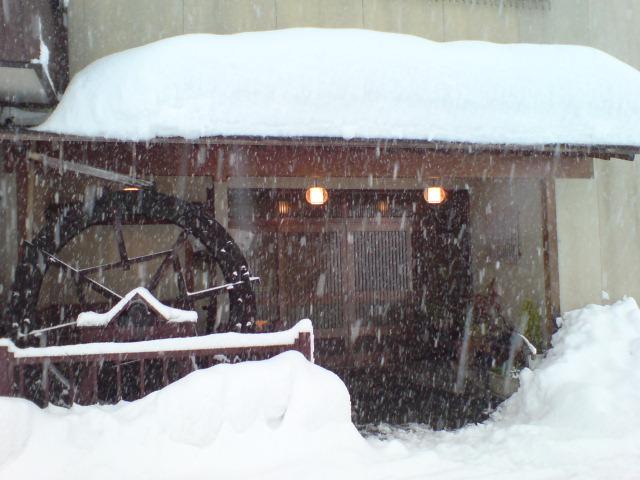 大雪のホワイトクリスマス。_d0182179_1463261.jpg