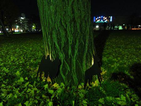 光のぷろむなぁど2011 2日目(12/18)_e0149596_21591510.jpg