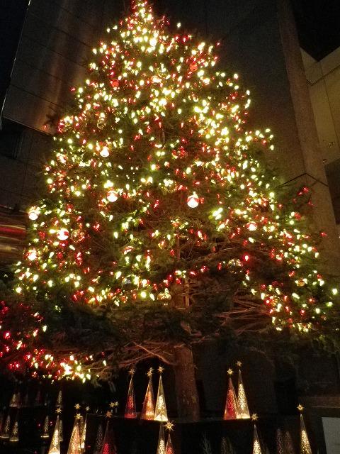 Merry Christmas☆_b0249499_0423190.jpg