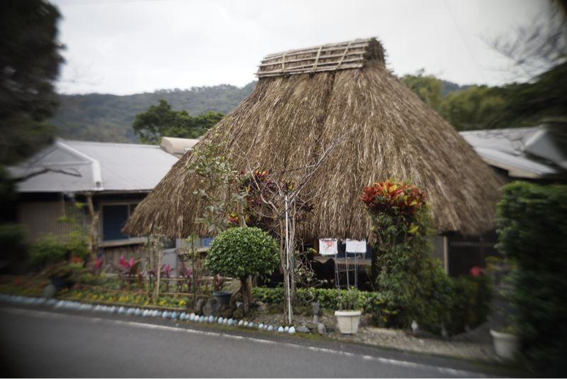 海界の村を歩く 奄美大島2_d0147406_12333121.jpg