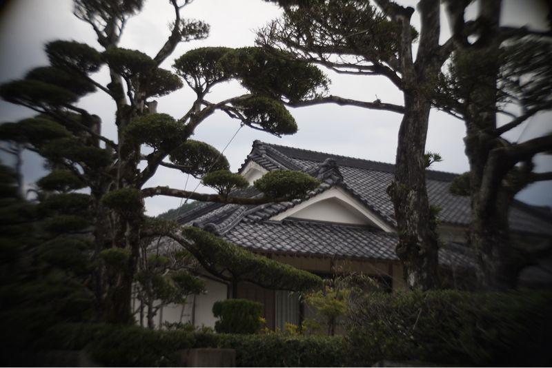 海界の村を歩く 奄美大島2_d0147406_14351646.jpg