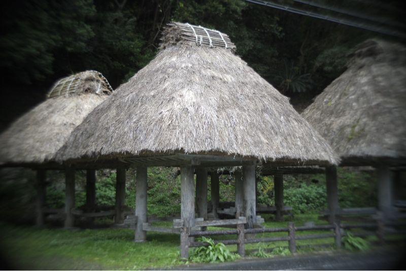 海界の村を歩く 奄美大島1_d0147406_6373129.jpg