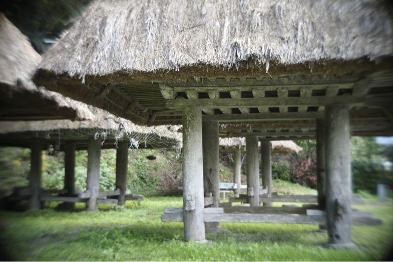 海界の村を歩く 奄美大島1_d0147406_6572848.jpg