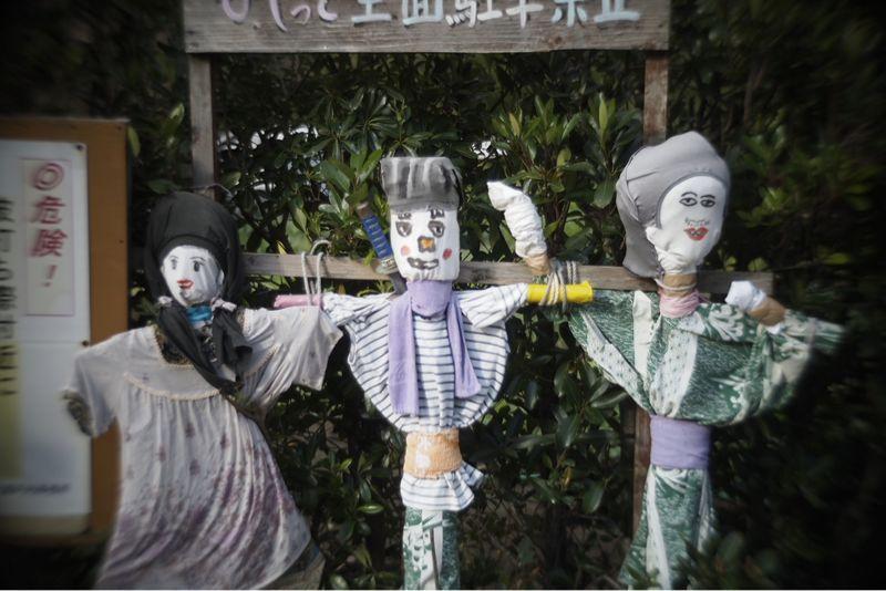 海界の村を歩く 奄美大島1_d0147406_6573213.jpg