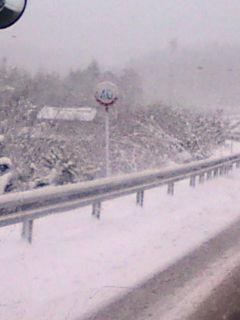 大雪です。_e0094315_8361314.jpg