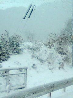 大雪です。_e0094315_8361361.jpg