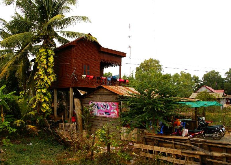 1753 ぶらりカンボジア(2)ひろびろ湿原_b0211627_1957124.jpg