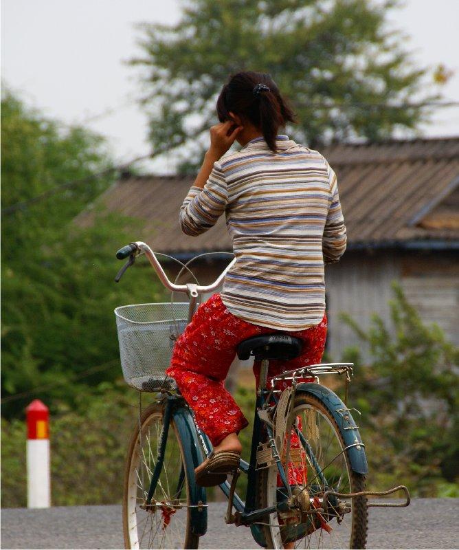 1753 ぶらりカンボジア(2)ひろびろ湿原_b0211627_2010269.jpg