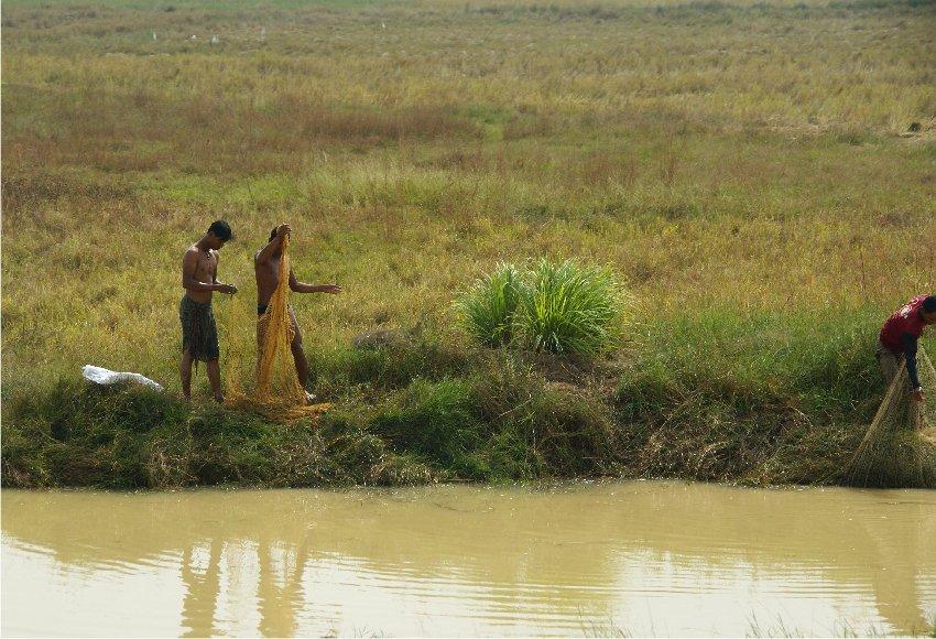 1753 ぶらりカンボジア(2)ひろびろ湿原_b0211627_20342958.jpg