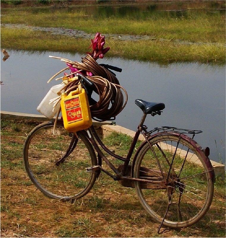 1753 ぶらりカンボジア(2)ひろびろ湿原_b0211627_20425069.jpg