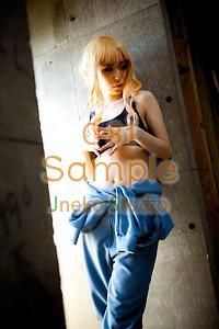 2011年 冬コミックマーケット81 新作コスプレROMのご案内_b0073141_22343958.jpg