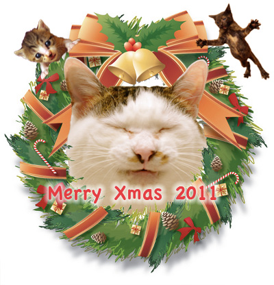 Merry Xmas 2011_a0028451_043750.jpg