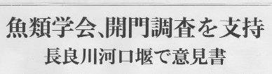 日本魚類学会 河口堰開門調査を支持_f0197754_20495148.jpg
