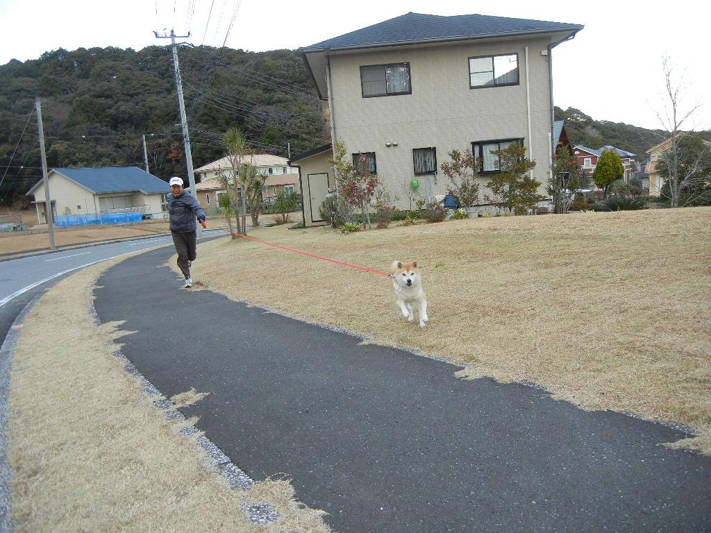 2011年12月26日(月)愛ちゃんと散歩にGO!_f0060461_19575523.jpg