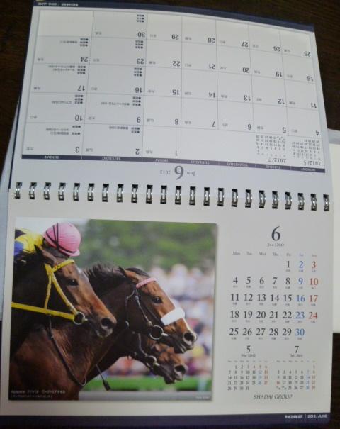 来年のカレンダーも♪_c0100865_6575326.jpg