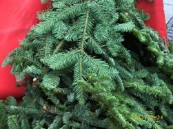 ミュンヘンマリエン広場のクリスマスマーケット_e0195766_450533.jpg