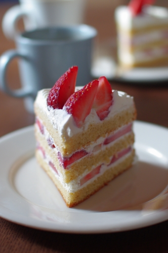クリスマスショートケーキ2011 (シラネでスポンジを作る)_c0110869_152133.jpg