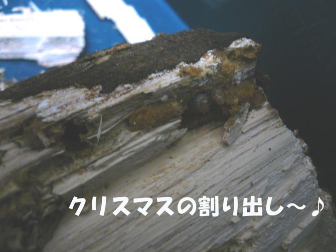 f0183484_027345.jpg