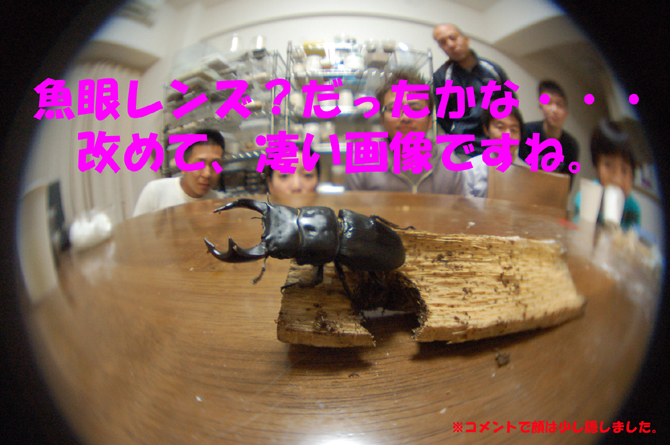 f0183484_0275742.jpg