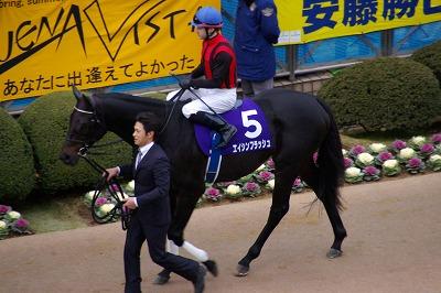 魅せた三冠馬の底力!オルフェーヴルが重賞6連勝で豪華メンバーの有馬記念を制す!_b0015386_2372636.jpg