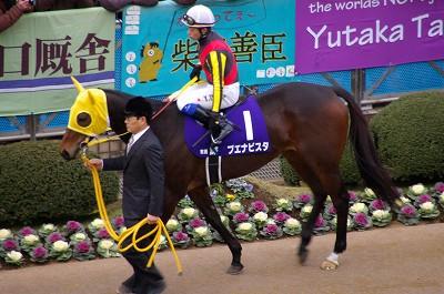 魅せた三冠馬の底力!オルフェーヴルが重賞6連勝で豪華メンバーの有馬記念を制す!_b0015386_2453348.jpg