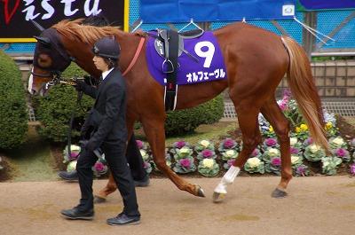 魅せた三冠馬の底力!オルフェーヴルが重賞6連勝で豪華メンバーの有馬記念を制す!_b0015386_2455873.jpg
