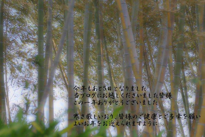 c0047422_1944139.jpg