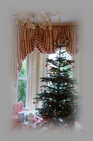 2011年クリスマス♪_d0104926_26534.jpg