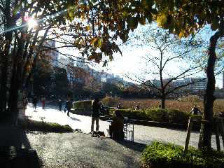 池のほとりでボサノバ_a0103940_210646.jpg
