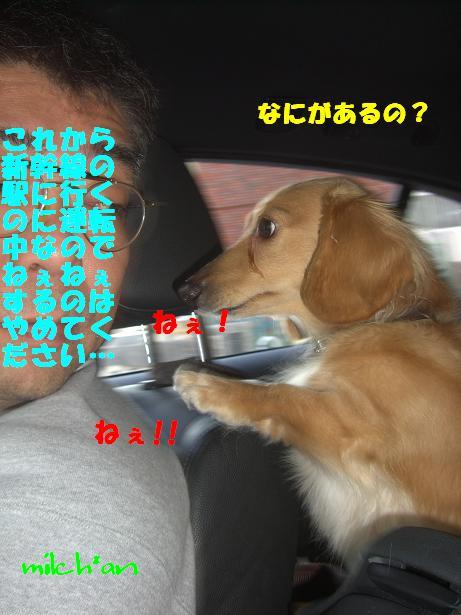 b0115642_2219578.jpg