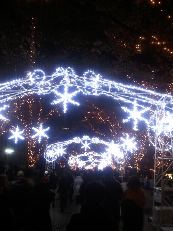 クリスマスまで!?_a0137049_2485787.jpg
