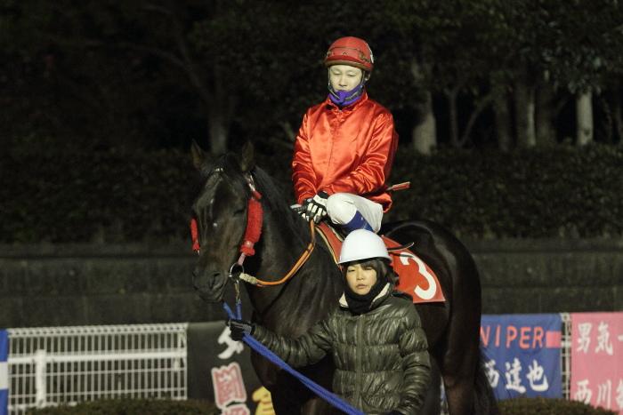 2011年12月25日(日) 高知競馬 9R 馬産地日高協賛特別 C2-1選抜馬_a0077663_8575128.jpg