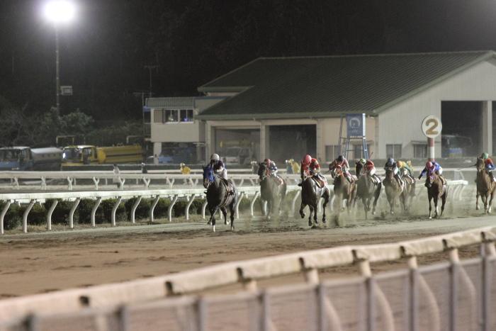2011年12月25日(日) 高知競馬 9R 馬産地日高協賛特別 C2-1選抜馬_a0077663_858167.jpg