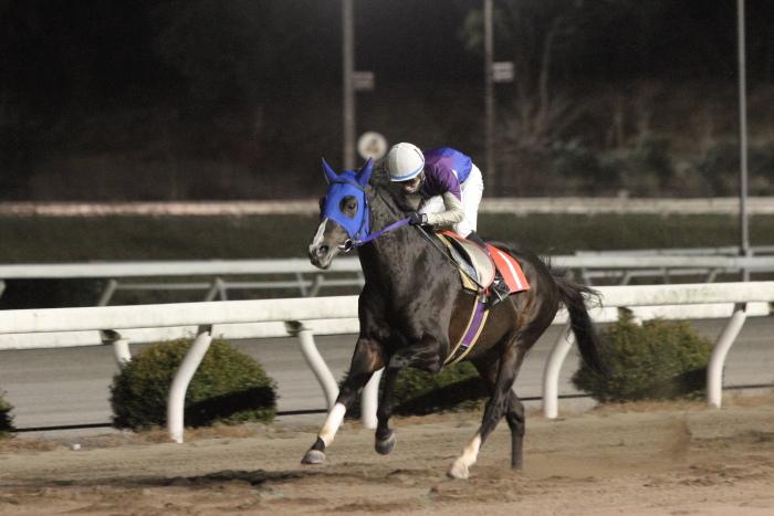 2011年12月25日(日) 高知競馬 9R 馬産地日高協賛特別 C2-1選抜馬_a0077663_8583685.jpg