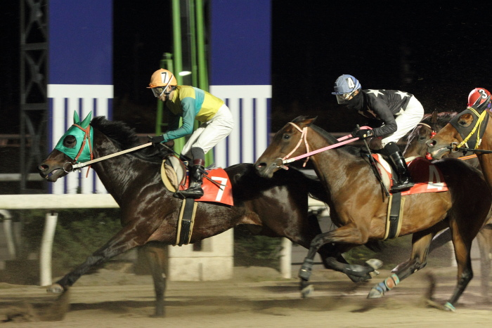 2011年12月25日(日) 高知競馬 9R 馬産地日高協賛特別 C2-1選抜馬_a0077663_858727.jpg