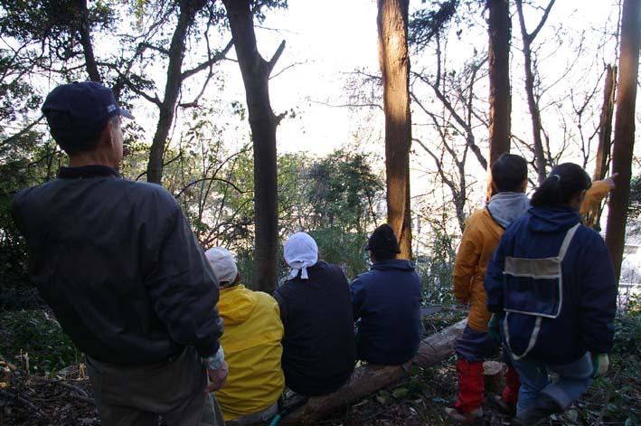 六国見山森林公園の今年最後の臨時手入れ終了:12・24_c0014967_2314051.jpg